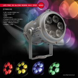 LED PAR 36 6x10W RGBW 4in1 IP65 catalog